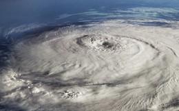 """Khoa học mới khám phá ra hiện tượng """"bão động"""" mới: Động đất đáy biển sinh ra bởi bão lớn"""