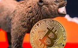 Bitcoin lùi sâu về 7.000 USD