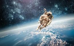 Cần phi hành đoàn bao nhiêu người thì mới đủ để sống sót trên đường sang hệ sao Proxima Centauri?