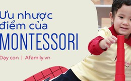 Tất tật ưu nhược điểm của phương pháp Montessori: Bố mẹ nắm rõ trước khi cho trẻ theo học
