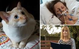 Tưởng vết mèo cào là bình thường, người phụ nữ phải nhập viện để cắt bỏ da tay vì bị nhiễm trùng nặng