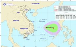 Áp thấp nhiệt đới có khả năng mạnh lên thành bão, di chuyển rất phức tạp