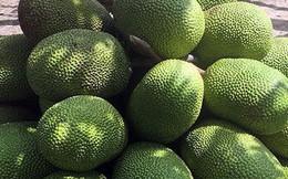 Nghịch lý mít Thái 50-70.000 đồng/kg, cam Việt rẻ như bèo chỉ 9-10.000 đồng/kg