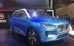 Phát hiện thêm nhiều ô tô Trung Quốc cài 'đường lưỡi bò' nhập khẩu vào Việt Nam