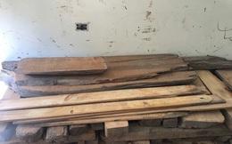 Giấu 48 thanh gỗ Pơ mu quý trong thành xe khách