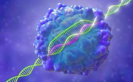 Lần đầu tiên, ba bệnh nhân ung thư ở Mỹ được điều trị bằng kỹ thuật chỉnh sửa gen CRISPR