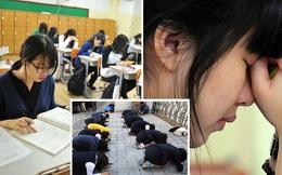 Giáo sư Hàn Quốc đang ghi tên con em mình vào làm đồng tác giả nghiên cứu - tất cả là vì cuộc thi đại học 'tàn khốc' nhất thế giới