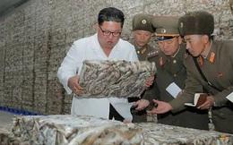 Triều Tiên tung loạt ảnh ông Kim thăm nhà máy cá