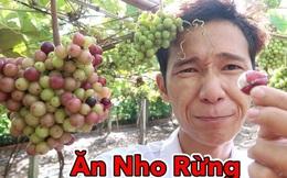 """Lâm Vlog - YouTuber nghỉ học năm lớp 11 sở hữu kênh YouTube gần 3 triệu subs, được đánh giá """"chất lượng nhất Việt Nam"""" là ai?"""
