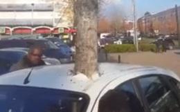 Video 'lú như con cú' gây hack não người xem: Cái cây có trước hay ôtô có trước?