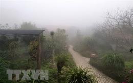Khu vực Bắc Bộ sáng có sương mù, trưa chiều trời nắng