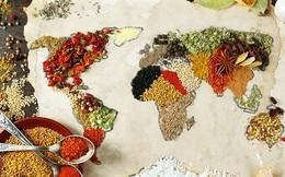 Việt Nam lọt top 10 quốc gia thống trị ẩm thực thế giới