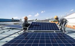 Bloomberg: Việt Nam bứt phá điện mặt trời, nhưng năng lượng sạch toàn cầu vẫn suy giảm vì Trung Quốc