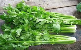 Những tác dụng không ngờ của rau cần tây