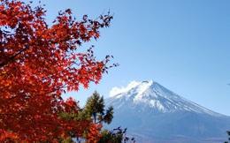 Vẻ đẹp quyến rũ mê hồn của mùa thu trên đỉnh núi Phú Sĩ (Nhật Bản)