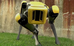 Chó robot của Boston Dynamics lần đầu tham gia vào biệt đội phá bom của cảnh sát Mỹ