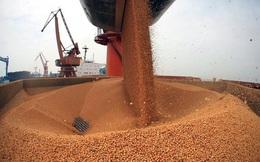 Sách Trắng lương thực và nỗi ám ảnh nạn đói từng xảy ra ở Trung Quốc