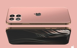 Apple có thể ra mắt tới 4 chiếc iPhone mới trong năm 2020