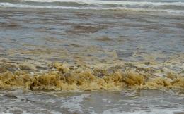 Quảng Ngãi: Nước biển đổi màu lạ, nổi bọt vàng bất thường