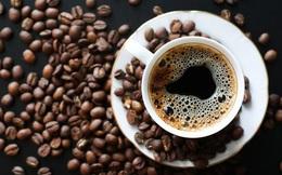 Chúng ta đang vô tư uống cà phê nhiều tới mức máu hiến tặng cũng chứa rất nhiều caffein