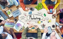 Soi lương nhân sự cấp cao tại Việt Nam: Tưởng sếp ngành IT đứng đầu nhưng thực tế vẫn thấp hơn lãnh đạo mảng sales và marketing