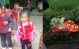 Con trai 4 tuổi mất tích ở nhà trẻ, 2 tuần sau con trở về với tình trạng khiến cha mẹ sốc nặng và đau đớn tột cùng