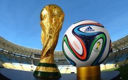 Kinh tế thể thao: Cân đo lợi hại chuyện 'đăng cai'