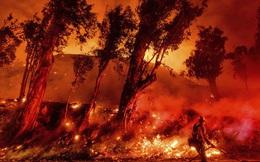"""Toàn cảnh Trái đất năm 2019 thực sự """"rực cháy"""" theo đúng nghĩa đen: Amazon cháy kỷ lục, nhưng đằng sau còn vấn đề hết sức đáng lo ngại"""