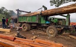 Hàng chục lâm tặc vây chém kiểm lâm trọng thương trong Vườn quốc gia Yook Đôn