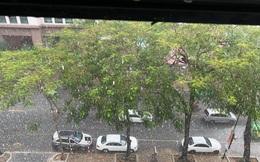 'Con mưa vàng' trút xuống Hà Nội, đánh tan bầu không khí mịt mờ khói bụi
