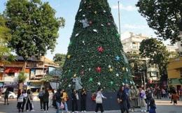 """Hà Nội xuất hiện nhiều cây thông """"siêu to khổng lồ"""" đón Noel 2019"""