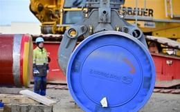 Tổng thống Mỹ thông qua lệnh trừng phạt đường ống dẫn khí Nga-châu Âu