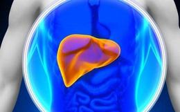 11 nguyên nhân có thể gây bệnh gan và mẹo để gan khỏe mạnh
