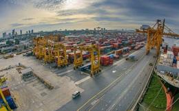 Báo Trung Quốc tổng kết thương mại châu Á 2019: Toàn khu vực u ám, Việt Nam là điểm sáng hiếm hoi