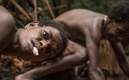 """Hình ảnh hiếm hoi về người Korowai - bộ lạc mà thế giới """"suýt"""" không biết đang tồn tại"""