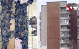 Chủ nhà khóc thét khi phát hiện 1.700 con dơi lúc nhúc, chiếm dụng ban công nhà để… 'hoan lạc'