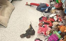 Giáng sinh không phải chỉ có điều vui vẻ: Cô gái chia sẻ ảnh 'bãi chiến trường' tại cửa hàng dịp lễ khiến mọi người phải suy ngẫm