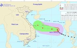Bão số 8 giật cấp 14, cách đảo Song Tử Tây khoảng 480km