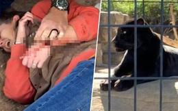 Bị báo vả suýt chết vì trèo rào vườn thú để chụp ảnh tự sướng
