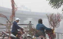 Hà Nội và các tỉnh Bắc Bộ sáng có sương mù, trưa chiều trời nắng
