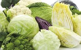 Chuyên gia dinh dưỡng: Ngừa bệnh ung thư, tim mạch, và tiểu đường bằng thực phẩm