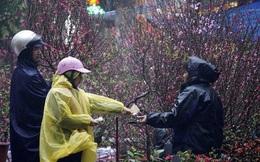Dự báo thời tiết Tết Nguyên đán Canh Tý 2020, từ 29 tháng Chạp đến 5 tháng Giêng