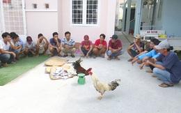 Triệt xóa tụ điểm đá gà ăn tiền vào chiều 28 Tết, bắt giữ 21 đối tượng