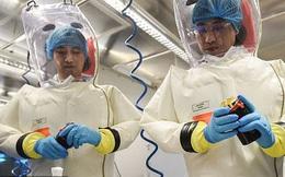 Xuất hiện giả thuyết virus corona có liên quan đến chương trình vũ khí sinh học ở Vũ Hán