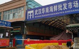 Chuyên gia: Không có mối liên hệ giữa ca phát hiện virus corona đầu tiên với chợ hải sản Vũ Hán