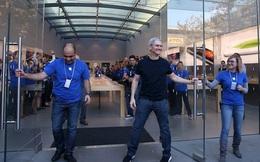 Năm 2019, Tim Cook được Apple trả 11,6 triệu USD, cao gấp 200 lần nhân viên