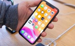 """Tin đồn: Apple có thể sắp """"mắn đẻ"""" như Samsung khi dự kiến ra mắt tới 6 model iPhone trong năm 2020?"""