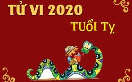 Vận mệnh của người tuổi Tỵ năm Canh Tý 2020: Có quý nhân phù trợ, nhiều cơ hội đầu tư kiếm tiền