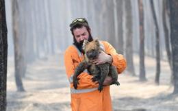 24h qua ảnh: Lính cứu hỏa giải cứu gấu túi khỏi đám cháy rừng ở Australia