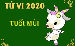 Vận mệnh của người tuổi Mùi trong năm Canh Tý 2020: Sự nghiệp khởi sắc, đề phòng tiểu nhân